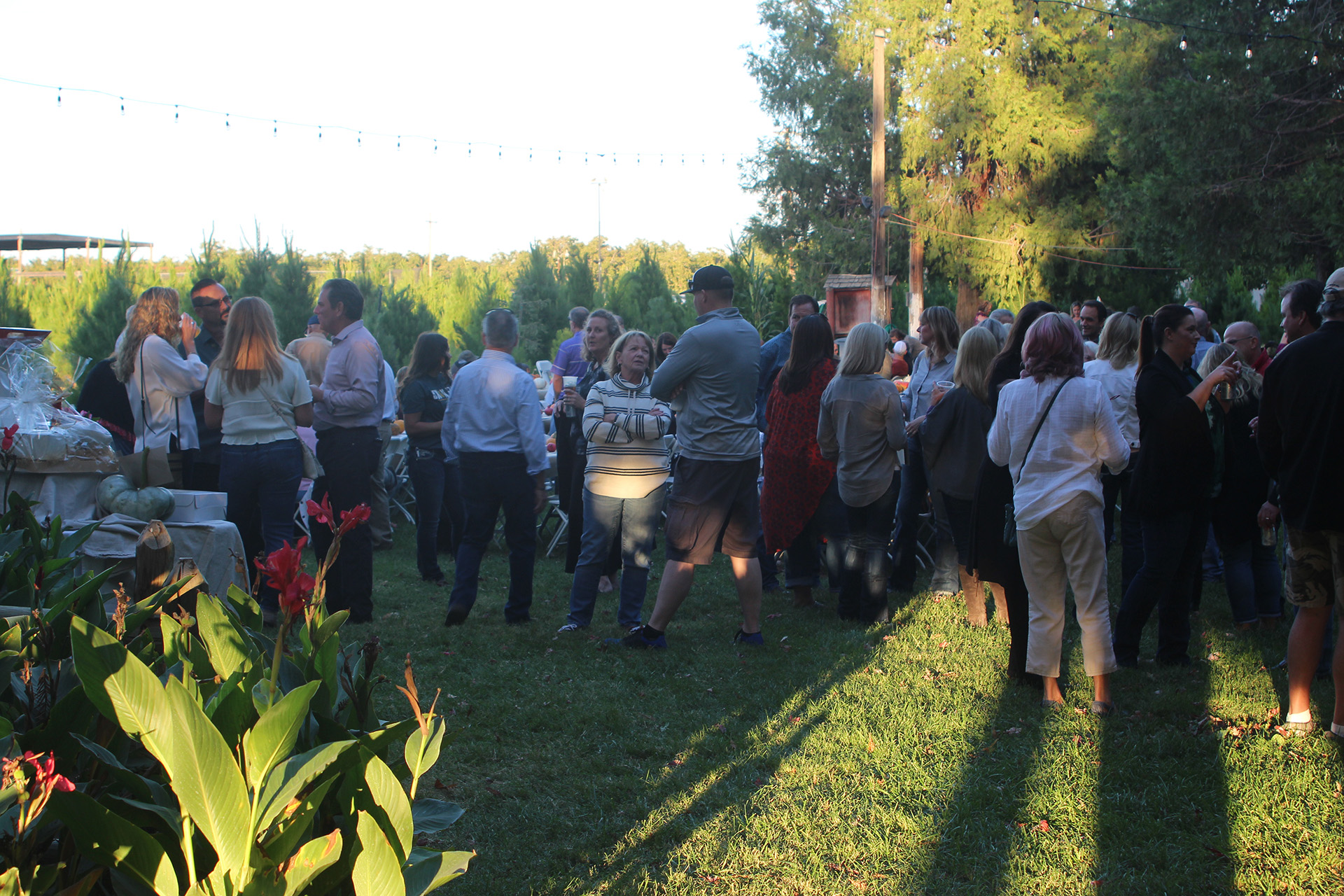 Outdoor event with group people talking together